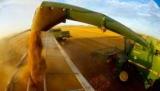 Продовольствие и сельское хозяйство нуждаются в полном переосмысливании'